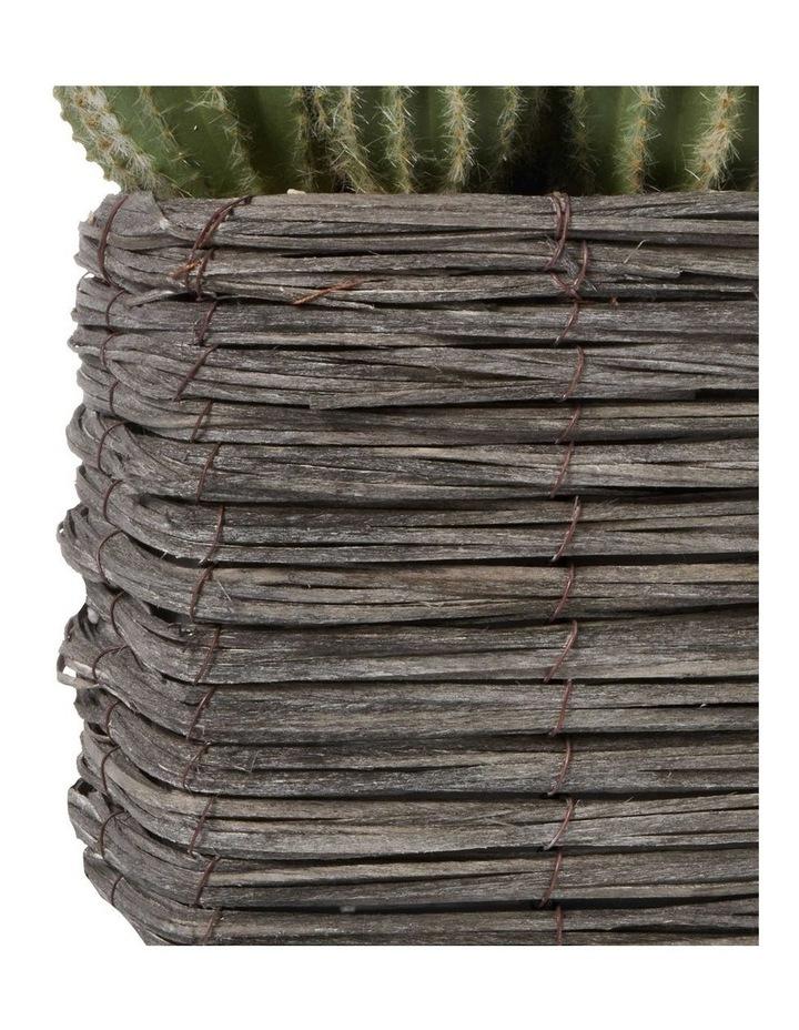 25cm Cactus Artificial Plant image 5