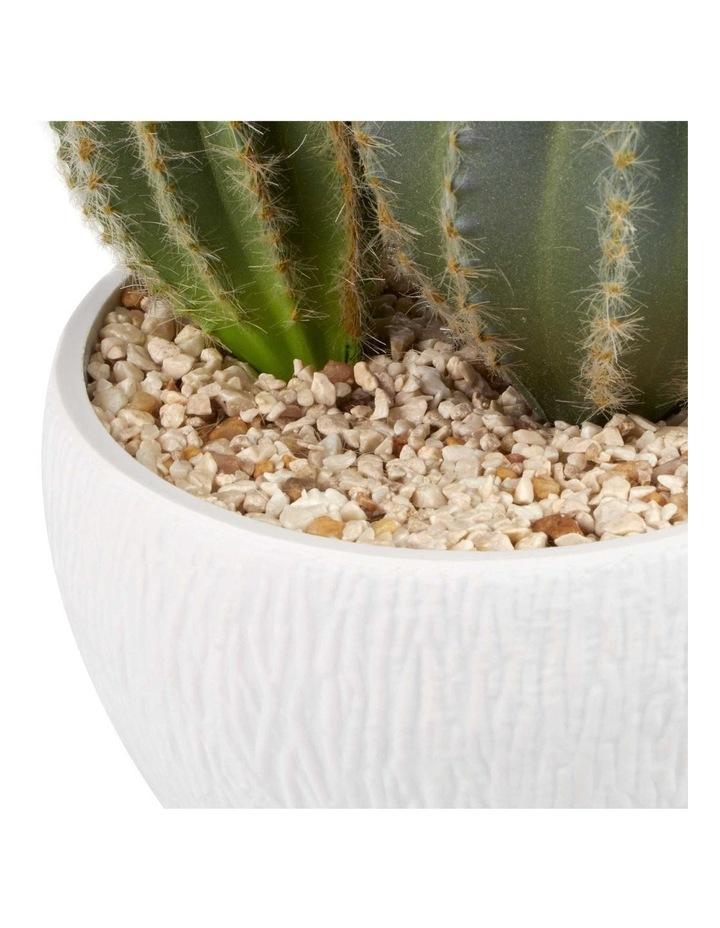 25cm Cactus Artificial Plant image 4