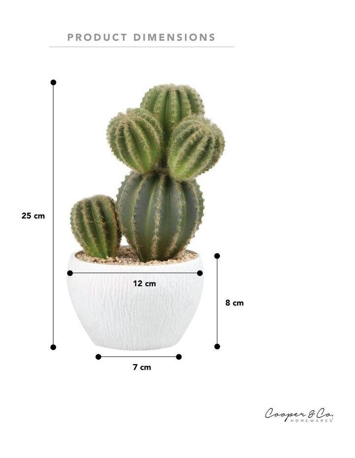 25cm Cactus Artificial Plant image 6