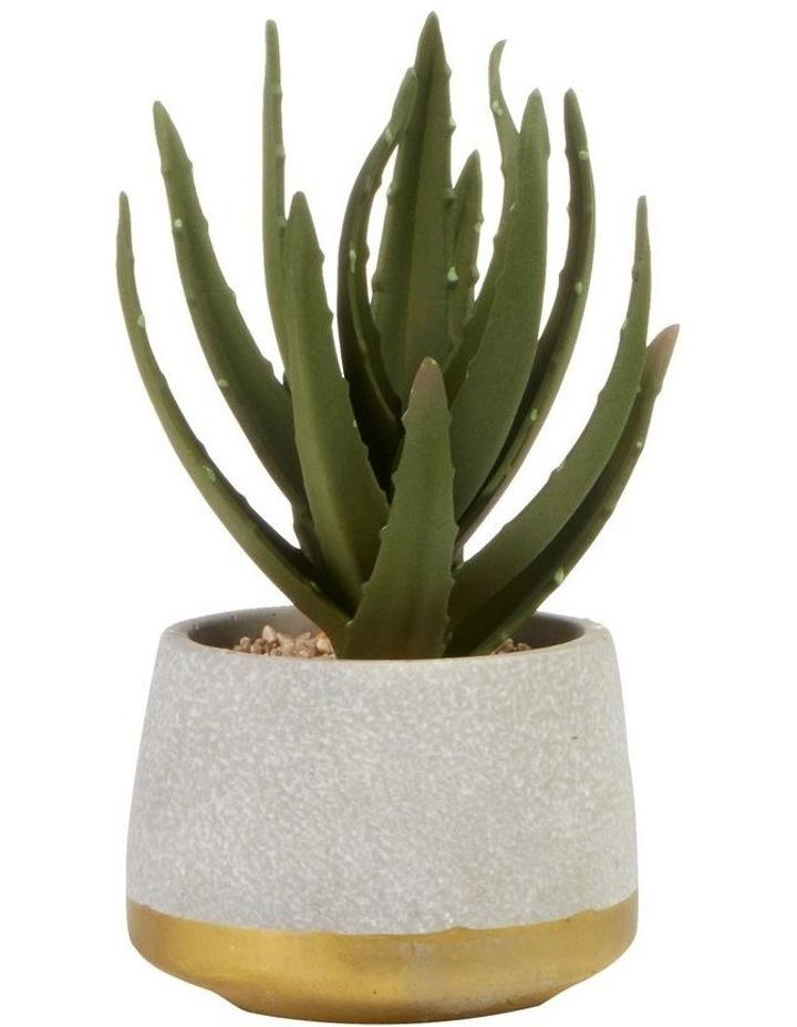 21cm Aloe Vera Artificial Plant image 1