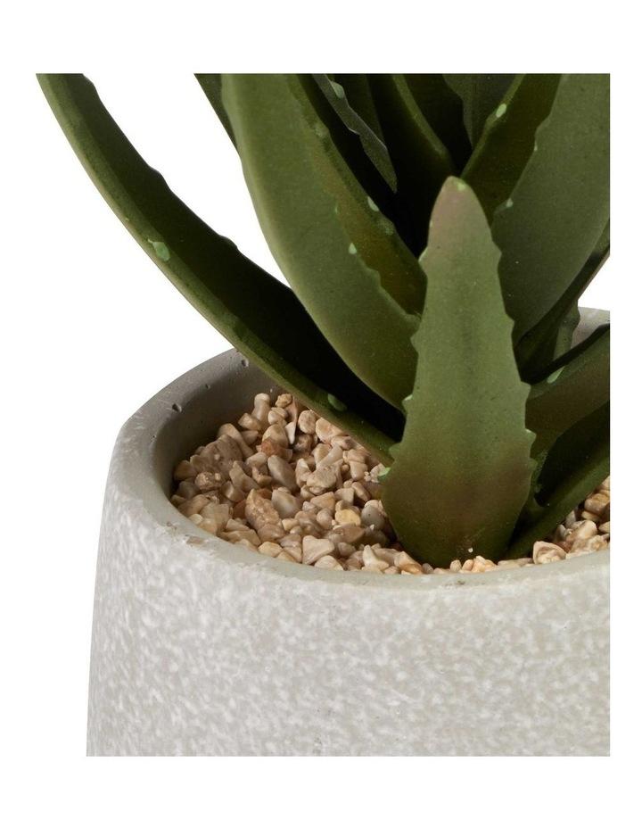 21cm Aloe Vera Artificial Plant image 3