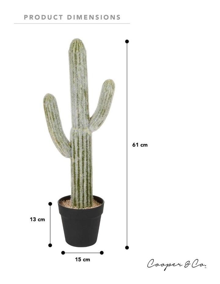 61cm Mexican Cactus Artificial Plant image 6