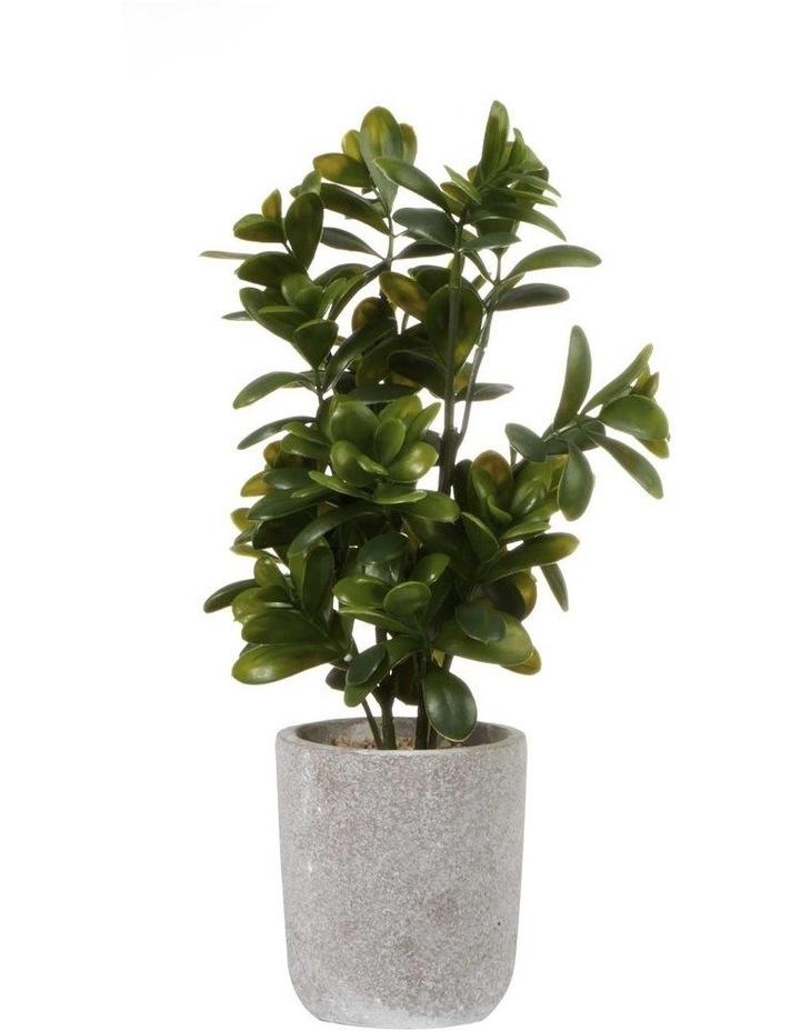 40cm Sweet Plum Artificial Plant image 1