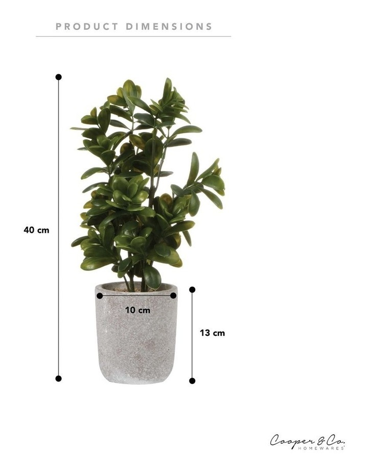 40cm Sweet Plum Artificial Plant image 5