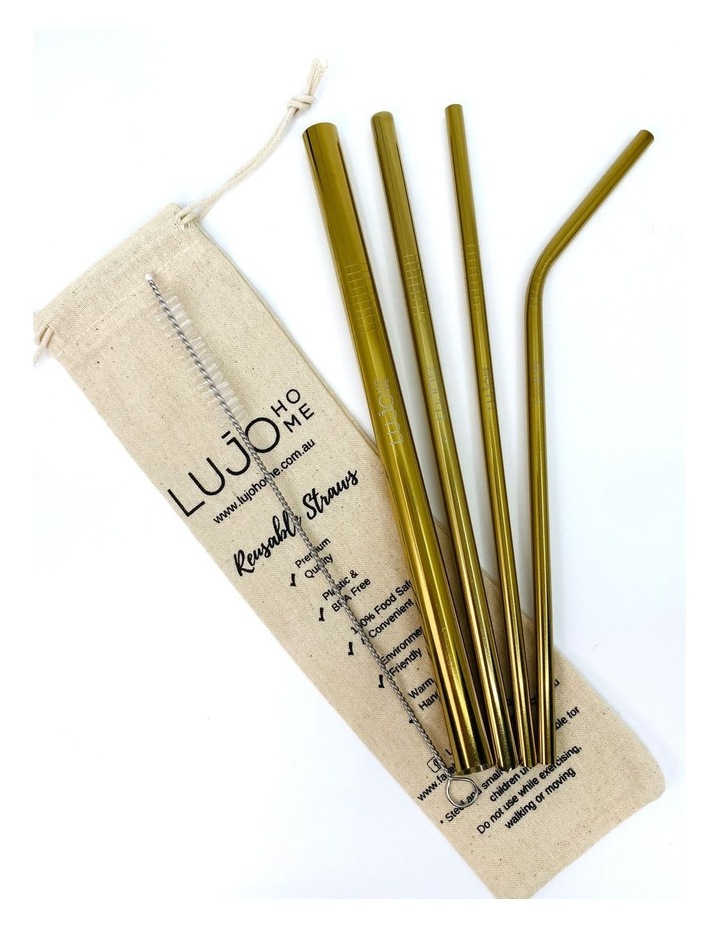 Metal straw pack image 1