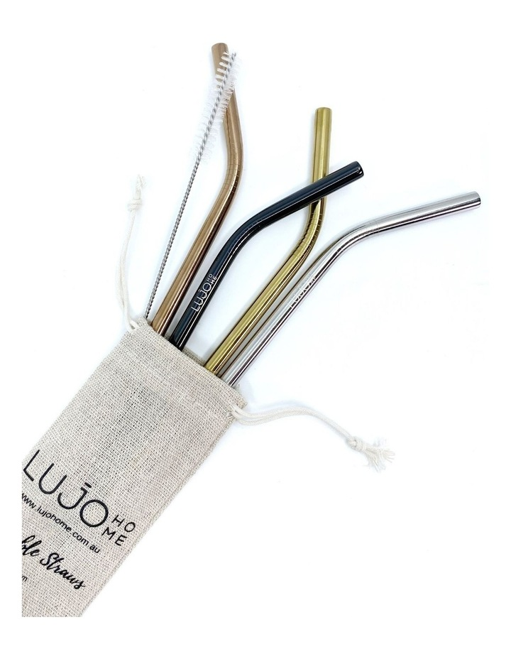 Smoothie Stainless Steel Straws image 1