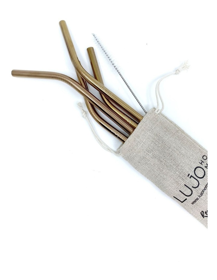 Stainless Steel Smoothie Straws image 1