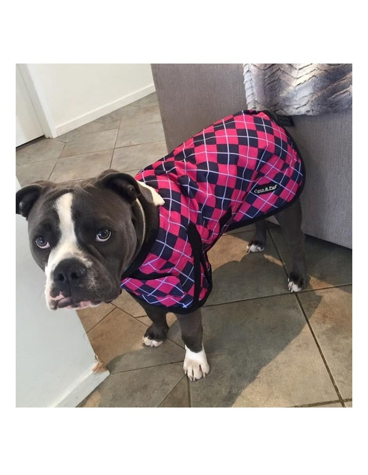 Waterproof Dog Coat 3009 - Pink Check LARGE image 3