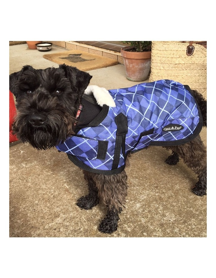Waterproof Dog Coat 3009 - Blue Check XXL image 3
