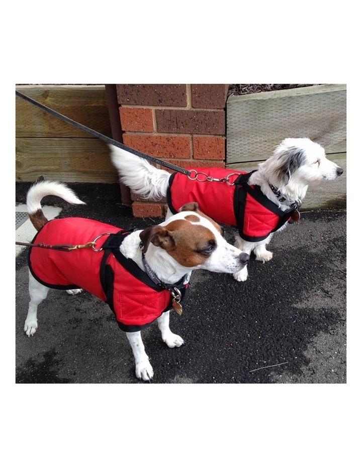 Waterproof Dog Coat 3008 - Red LARGE image 3
