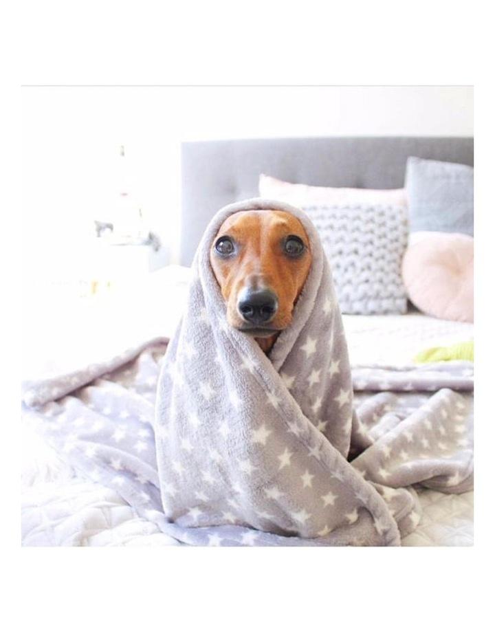 Hamptons Minky Blanket - Grey image 4