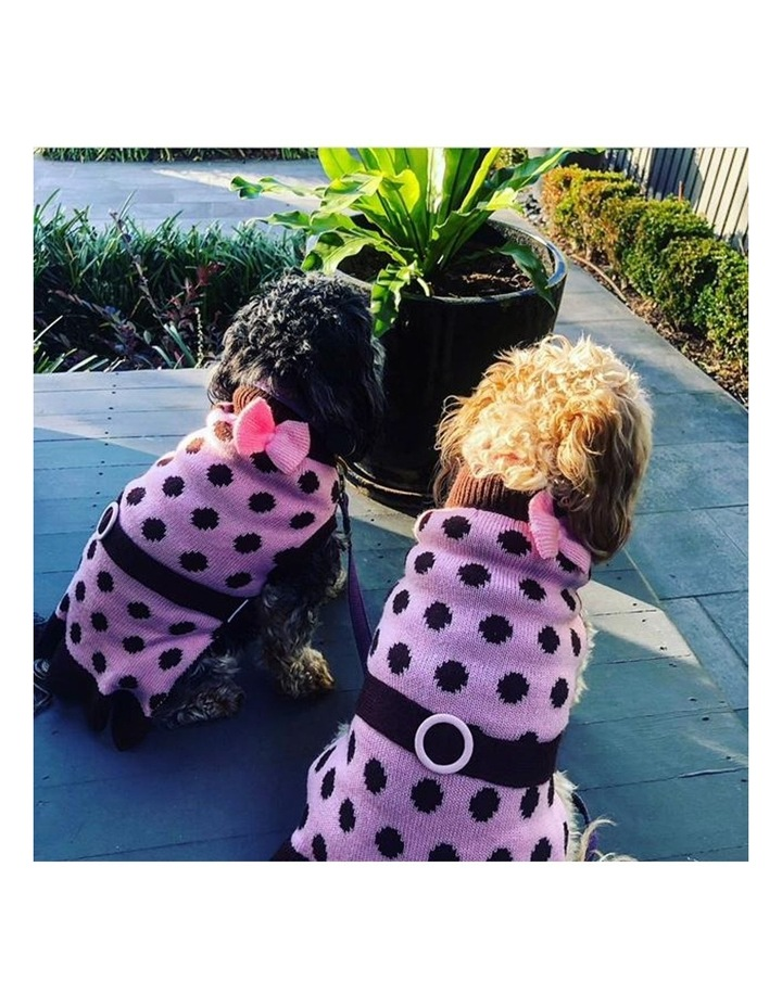 Sassy Girl Dog Sweater SMALL image 6
