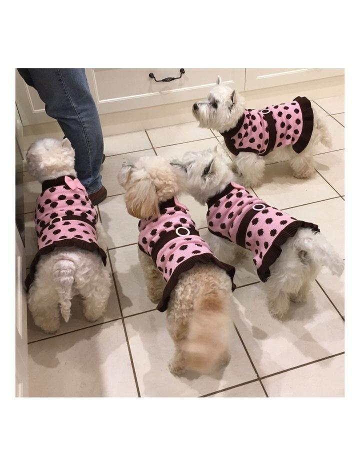Sassy Girl Dog Sweater MEDIUM image 7