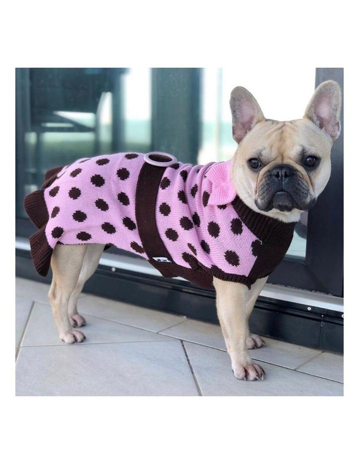 Sassy Girl Dog Sweater LARGE image 2