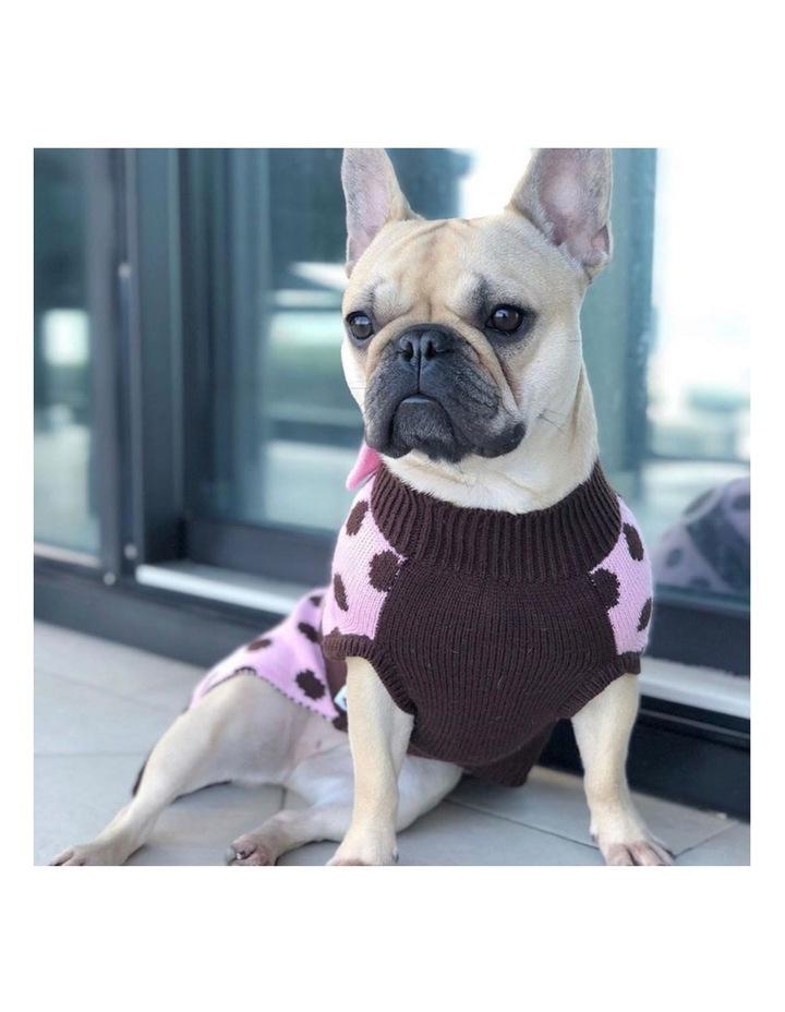 Sassy Girl Dog Sweater LARGE image 3