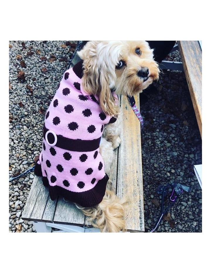 Sassy Girl Dog Sweater LARGE image 4