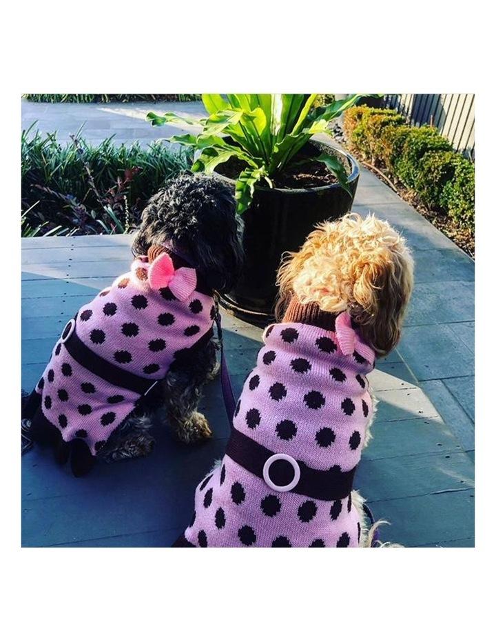 Sassy Girl Dog Sweater LARGE image 6