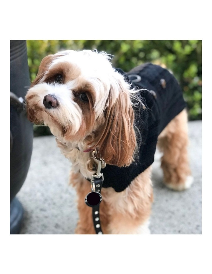 Paris Dog Sweater - Black XL image 3