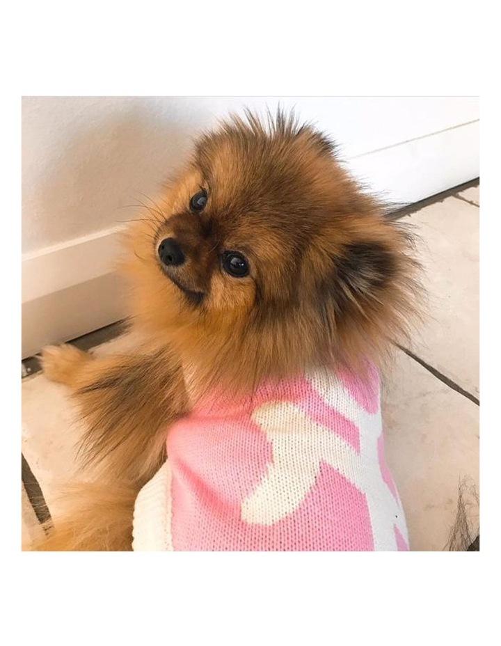 New York Dog Sweater - Pink LARGE image 4