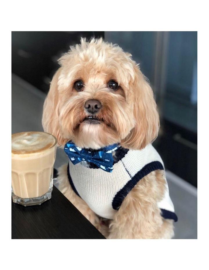 New York Dog Sweater - Cream/ Navy XS image 4