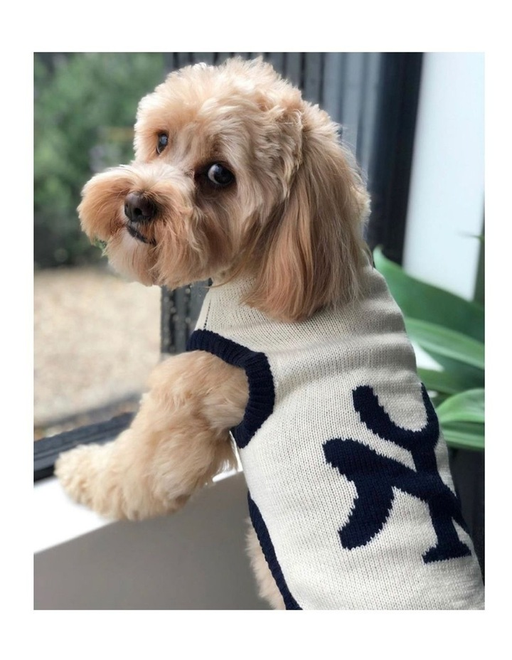 New York Dog Sweater - Cream/ Navy SMALL image 3