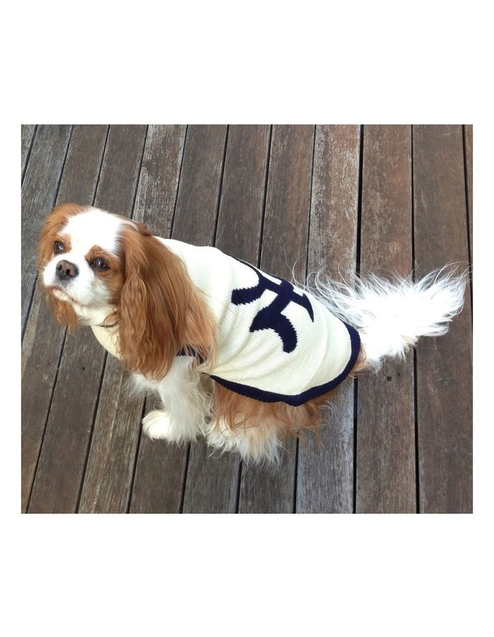 New York Dog Sweater - Cream/ Navy SMALL image 6