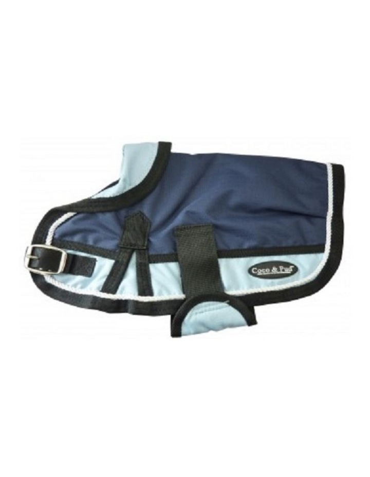 Waterproof Dog Coat 3022- Teal & Chocolate With Piping image 4