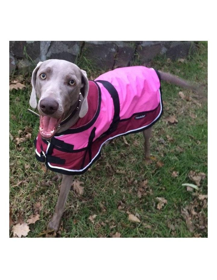 Waterproof Dog Coat 3022 - Red/ Pink LARGE image 4