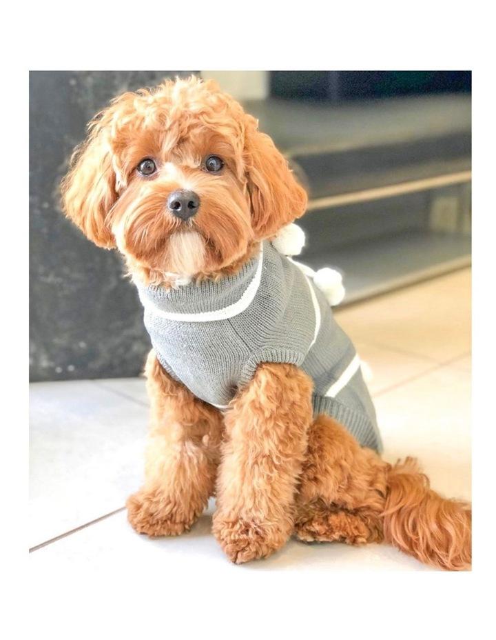 Pom Pom Dog Sweater MEDIUM image 3