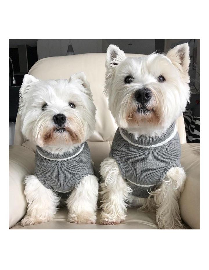 Pom Pom Dog Sweater MEDIUM image 4