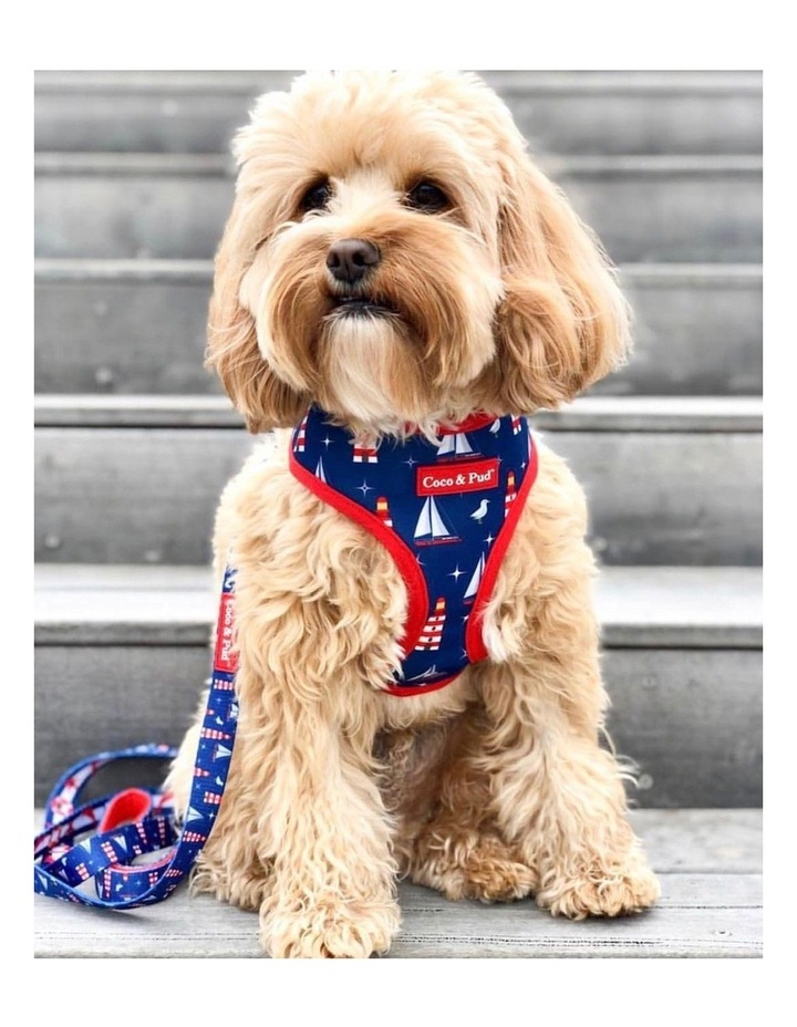 Hamptons Reversible Dog Harness - Large image 4