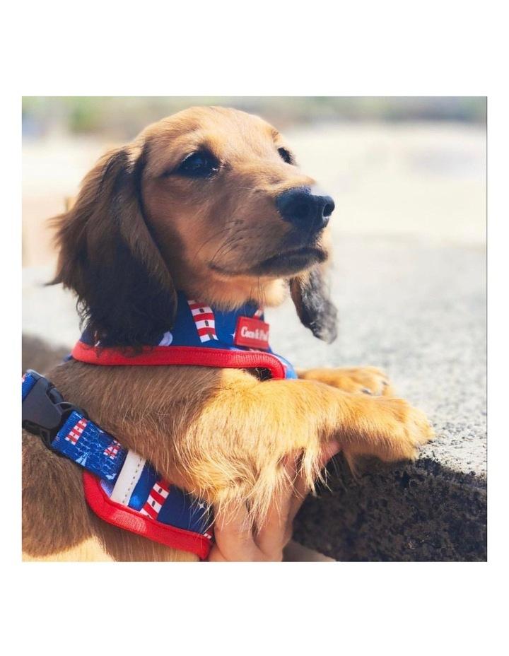 Hamptons Reversible Dog Harness - XS image 6