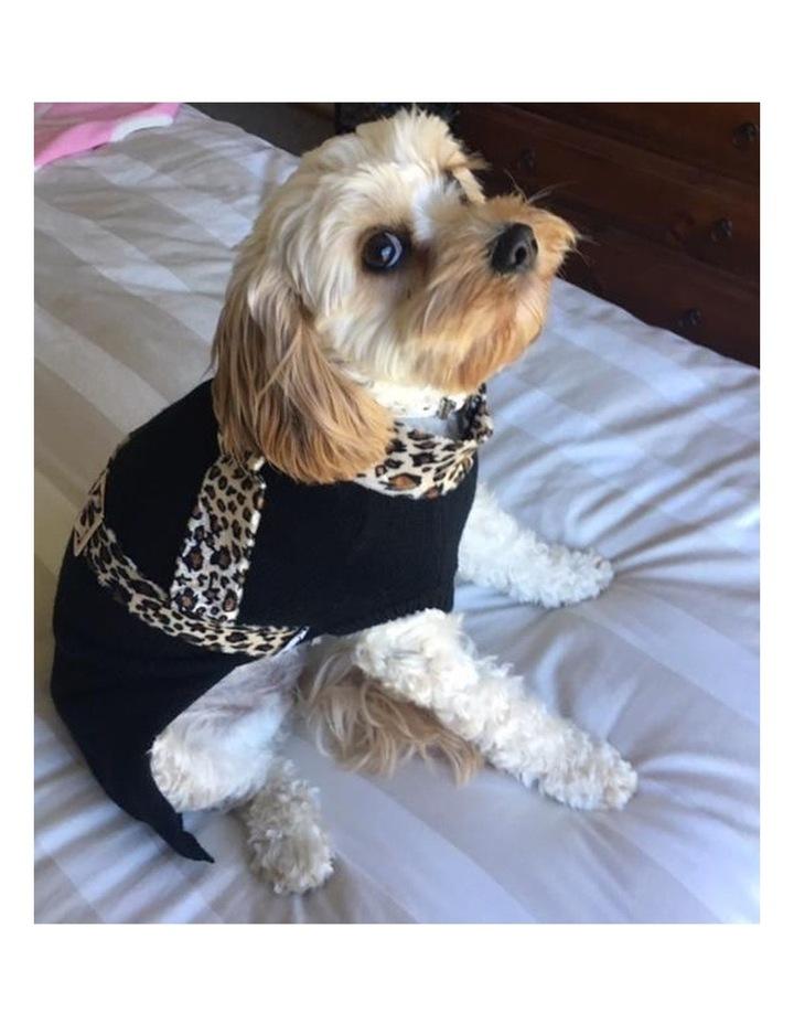 Milano Dog Sweater SMALL image 3