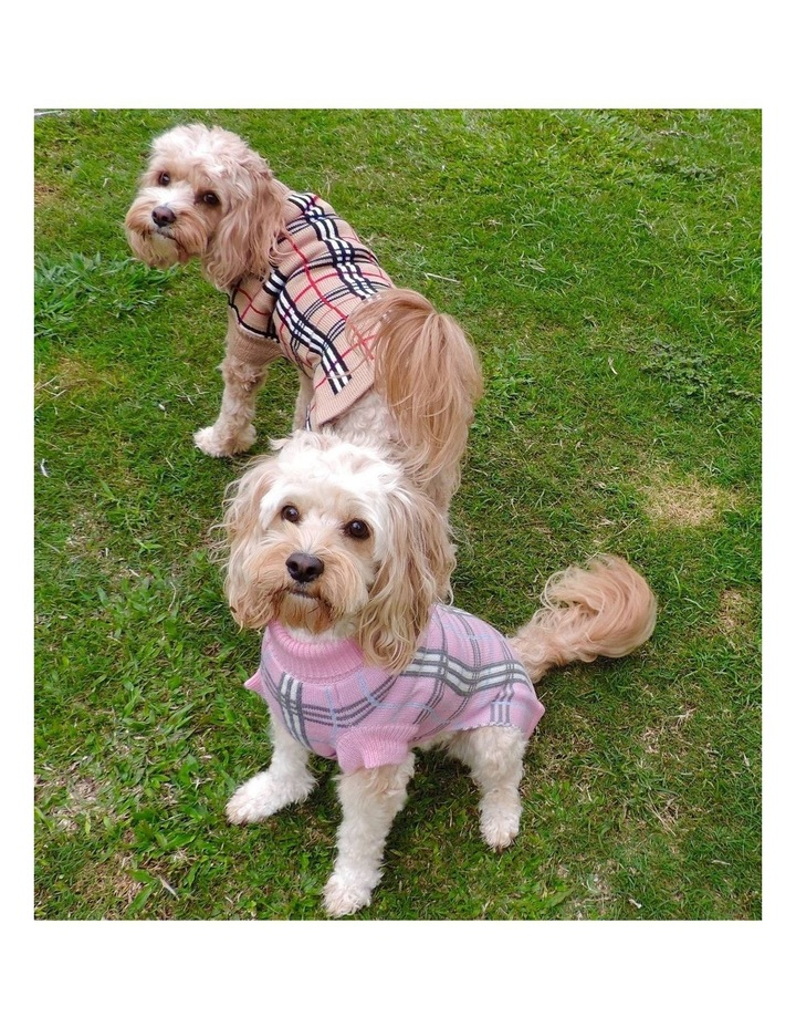 Knightsbridge Dog Sweater - Pink MEDIUM image 2