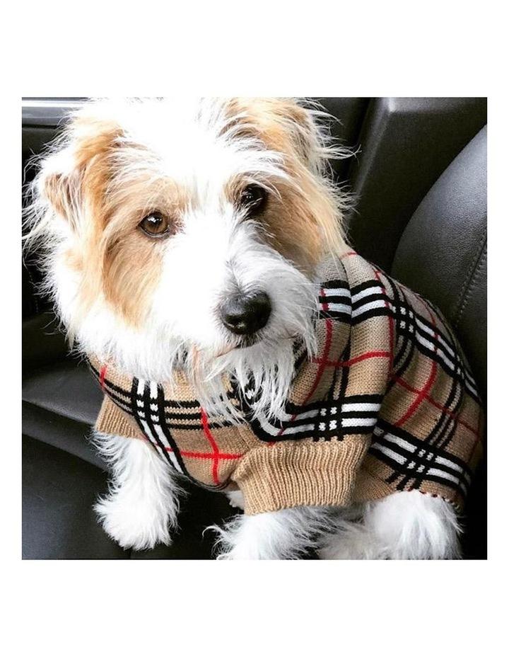 Knightsbridge Dog Sweater - Beige image 2