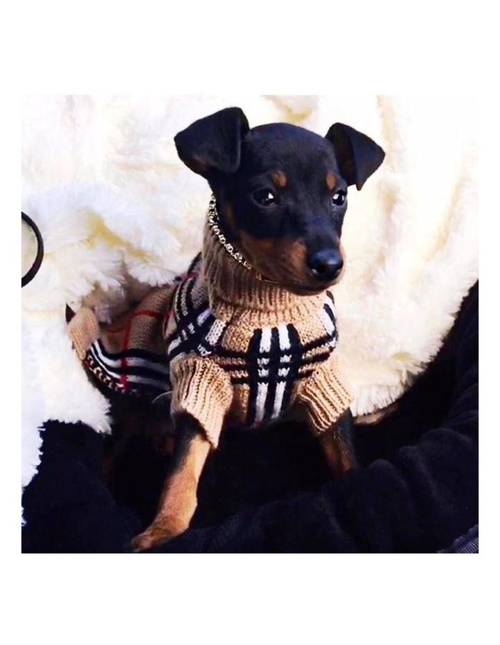 Knightsbridge Dog Sweater - Beige image 4