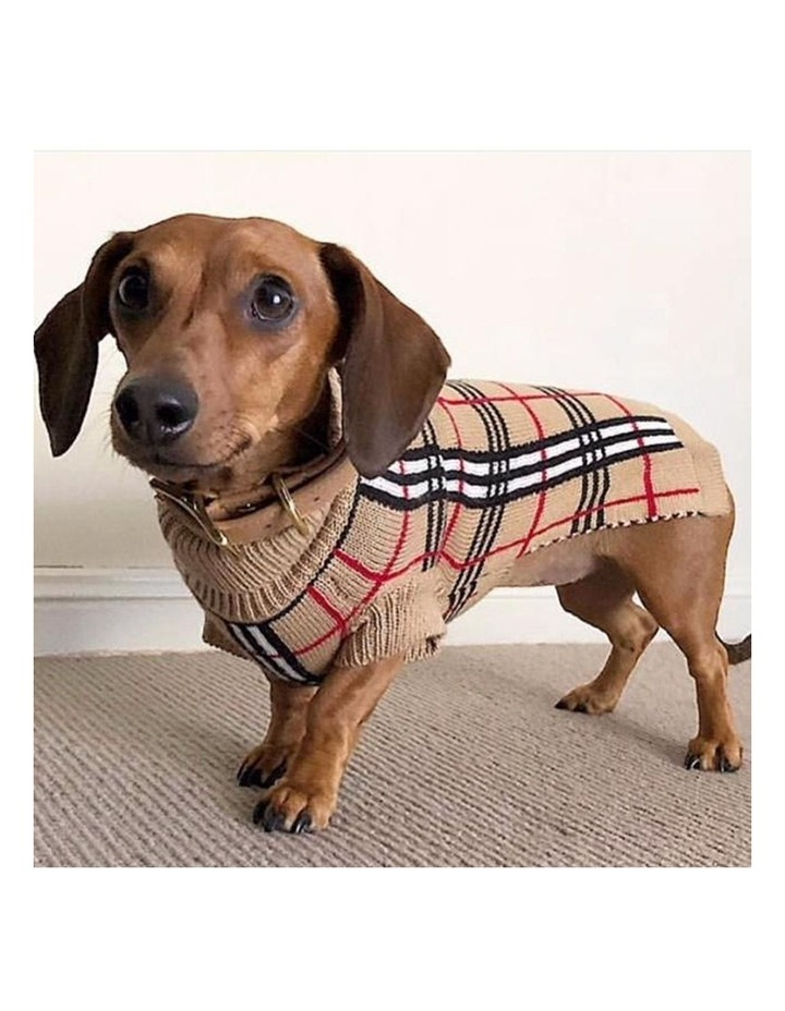 Knightsbridge Dog Sweater - Beige XXS image 6