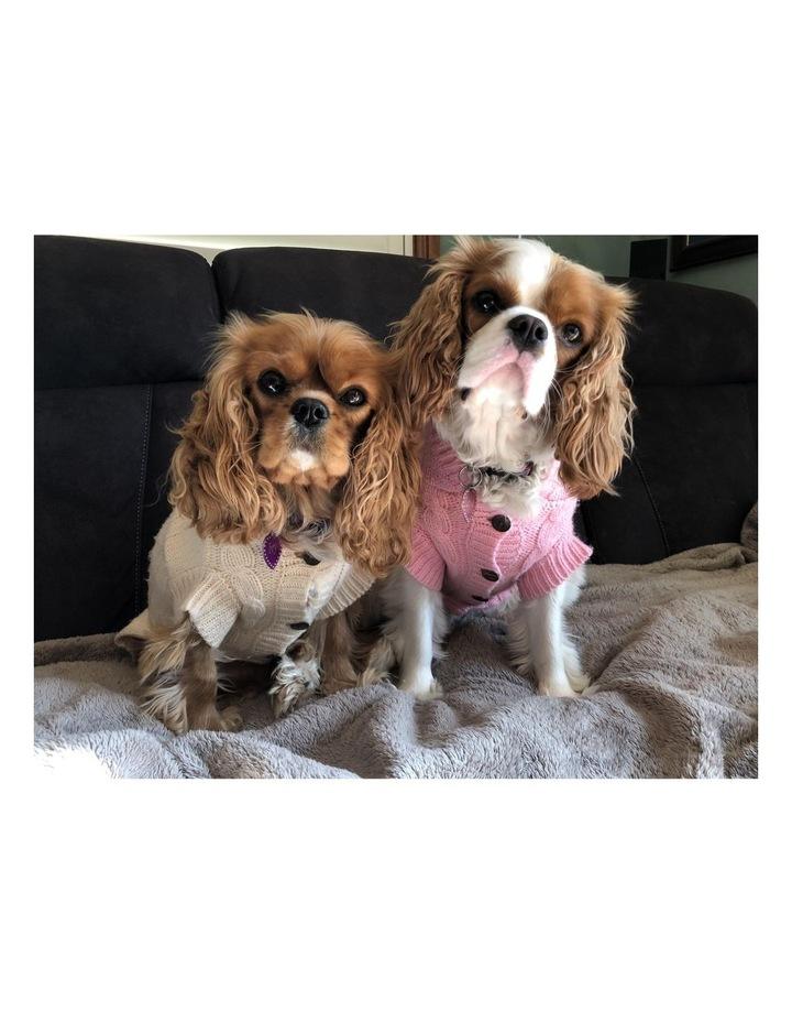 Edinburgh Dog Sweater - Large image 3