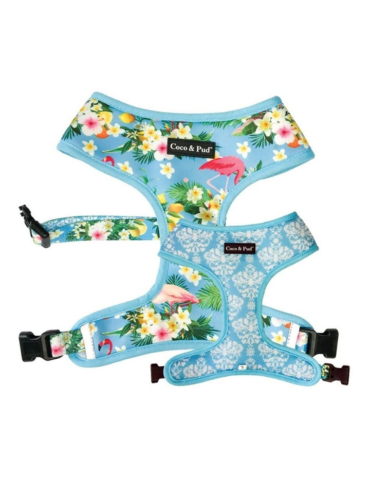 Coco & Pud Flamingo Tropical Dog Harness XS image 1