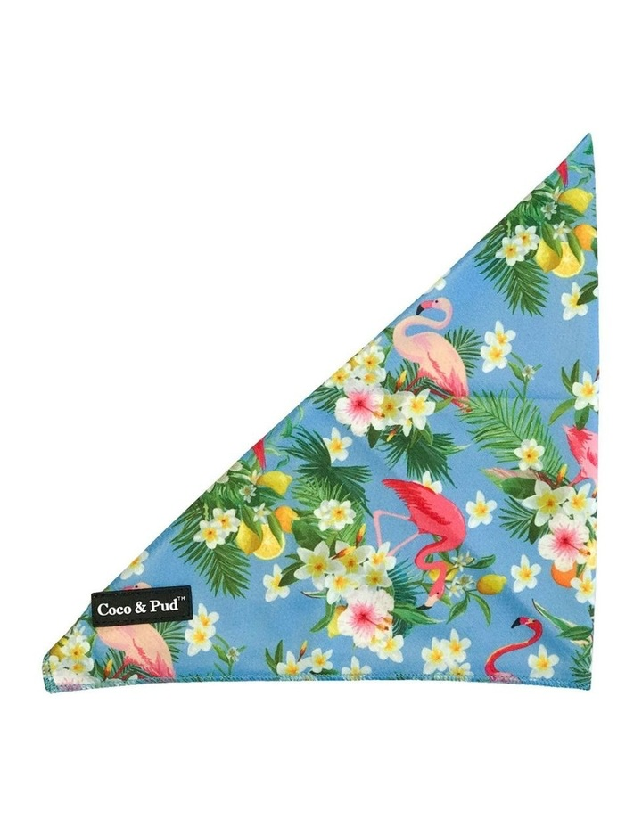 Coco & Pud Flamingo Tropical Dog Harness XS image 5