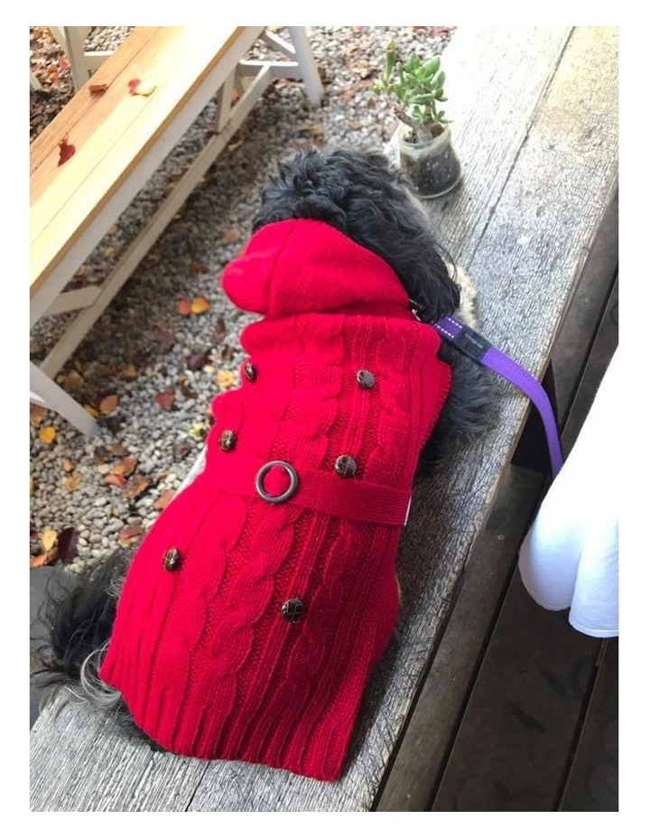 Paris Dog Sweater - Red SMALL image 3