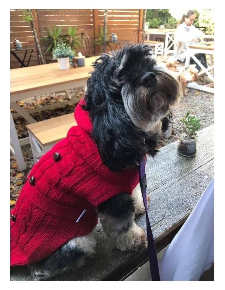 Paris Dog Sweater - Red LARGE image 5