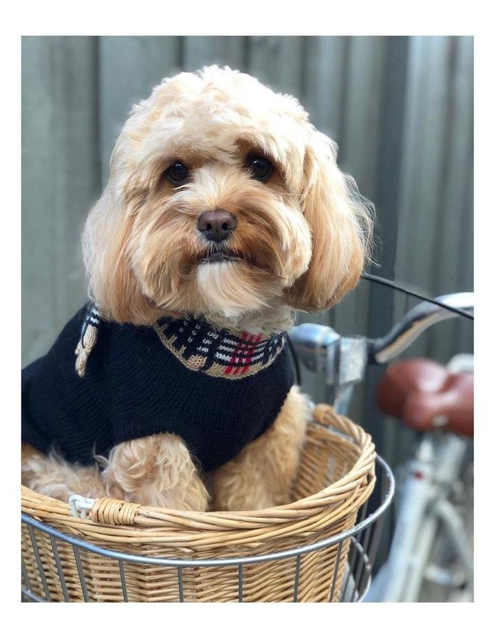 Chelsea Dog Sweater image 2