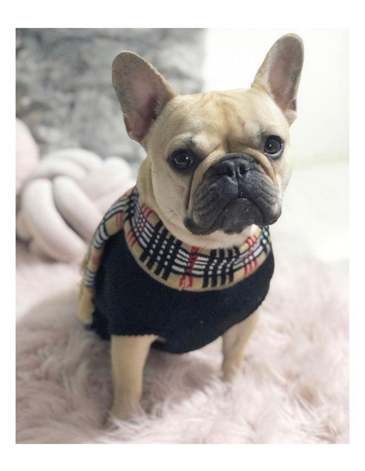 Chelsea Dog Sweater image 3