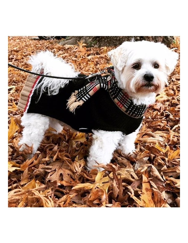 Chelsea Dog Sweater image 4