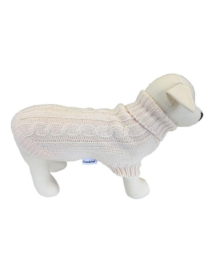 Brighton Dog Sweater - Cream MEDIUM image 1