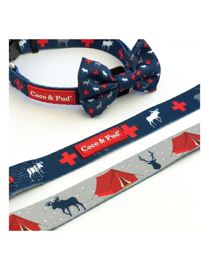 Adventure Reversible Dog lead/ Leash image 1