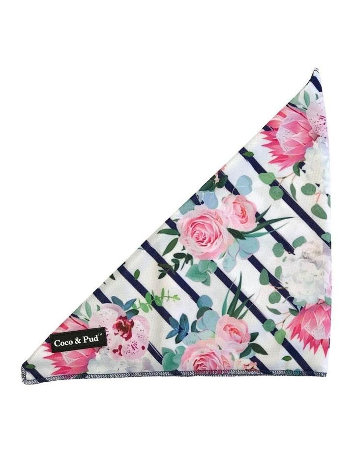 Floral Blooms Reversible Dog lead/ Leash image 6