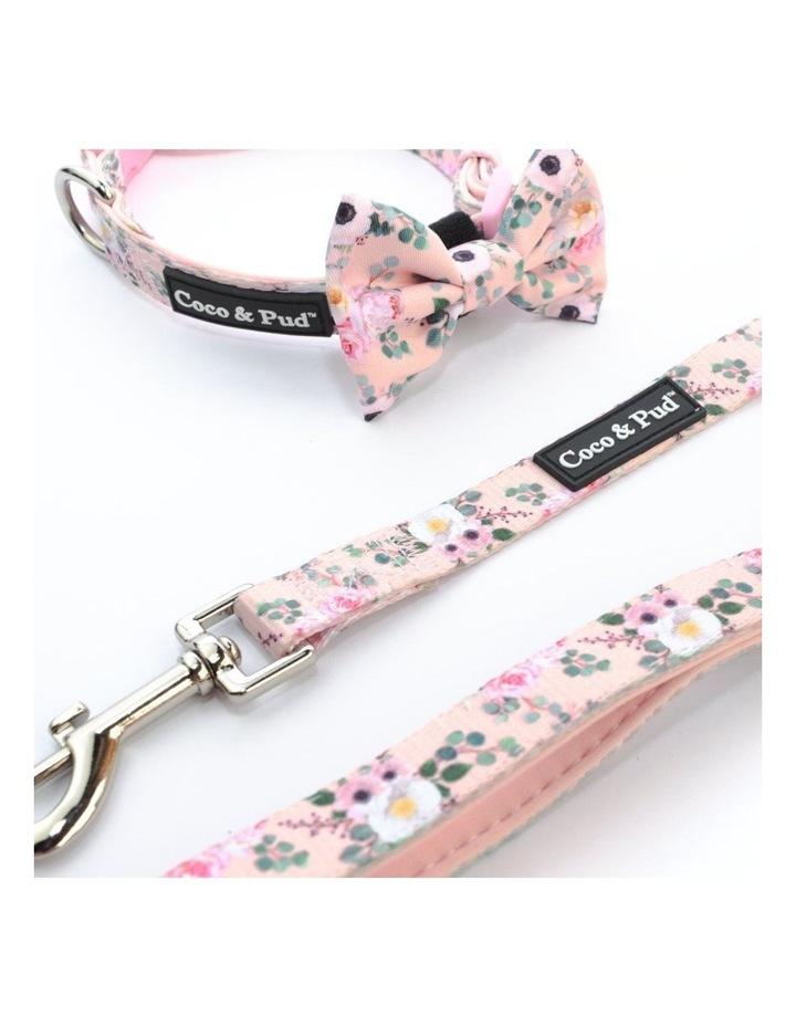 Provence Rose UniClip Dog Harness image 4