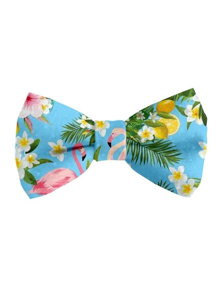 Flamingo Tropical Cat Safety Collar image 2